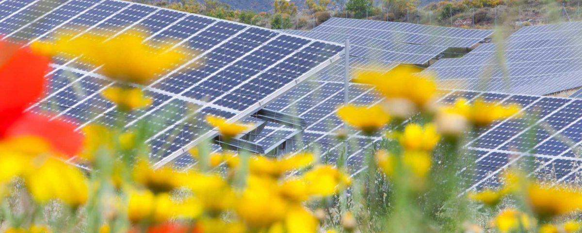 Ley de autoconsumo, un paso al frente en la autogeneración de energía